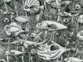 fish-underwater